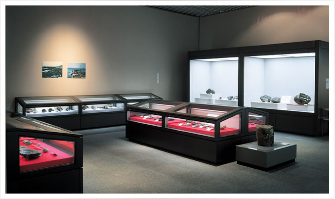 Display case for art or historical museums